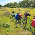 rowery oparte o płot
